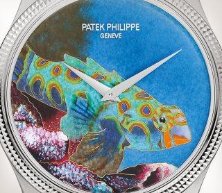 Patek Philippe Oficios artesanales Ref. 5177G-013 Oro blanco - Artístico