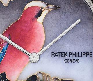 Patek Philippe Seltene Handwerkskünste Ref. 5738/50G-011 Weißgold - Artistic